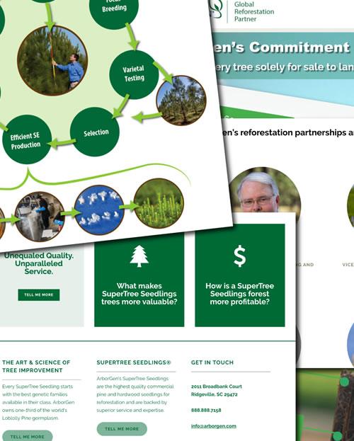 arborgen branding graphic design web design