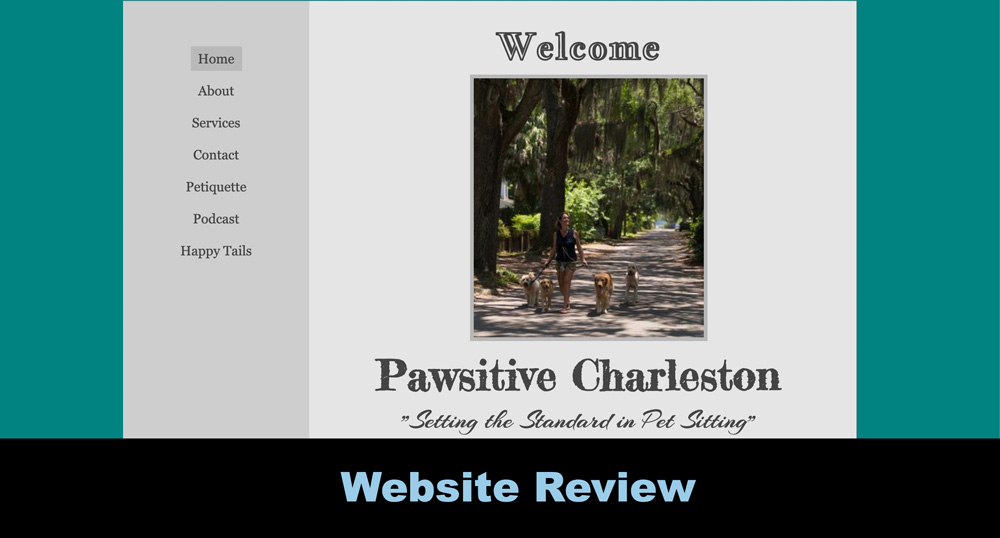 Website Review for Pawsitive Charleston